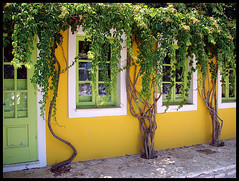 Yellow house, Fiskardo, Kefalonia (Eelke de Blouw) Tags: island greek islands mediterranean greece kefalonia cephallonia kefallonia ionian fiskardo cefalonia cephallenia kefallinia