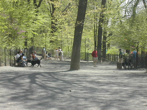 Riverside Park/ Dog Run