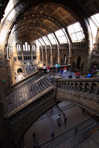 Michele Di Sei님이 촬영한 Natural History Museum.