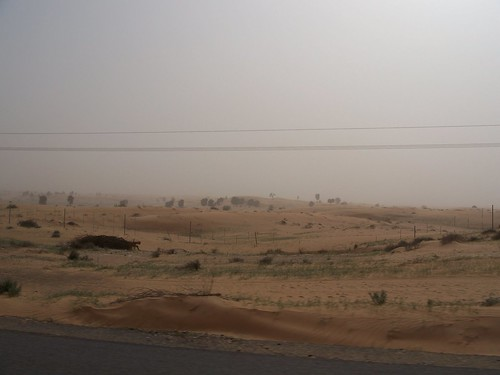 sandstorm from car window