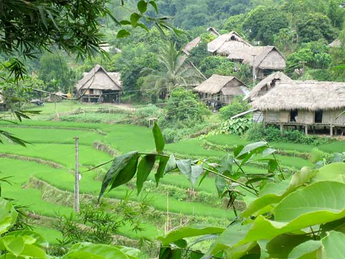 Trek Mai Chau tours by you.