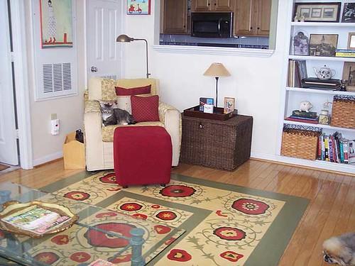 DC_apartment_livingroom2