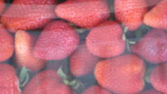 Strawberries IMG_1446.JPG Photo