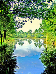 The faerie mere (Autumnsonata) Tags: trees light art nature water beautiful beauty wales landscape fantasy dreams faerie