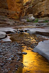 Lasting Glow (Suzanne AZICIT) Tags: arizona sports river grandcanyon photographers rafting coloradoriver occupations garyladd photocontesttnc08