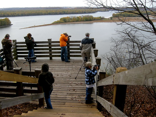 Birding Ohio ? Young Birders Clubs