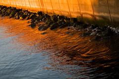Sunset on the seawall (Belltown) Tags: seattle orange rocks seawall elliottbay osp