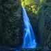 白神山地:『暗門の滝(第一の滝)』