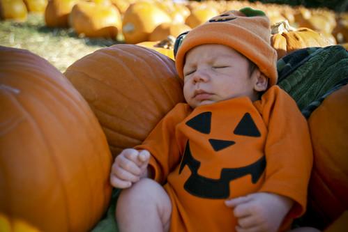 Halloween 2008_0115A