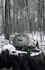 Smiling pumpkin (Peter_Cameron) Tags: hp5 bessar id1111 cv3517