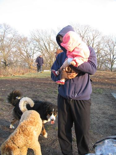 meeting pups