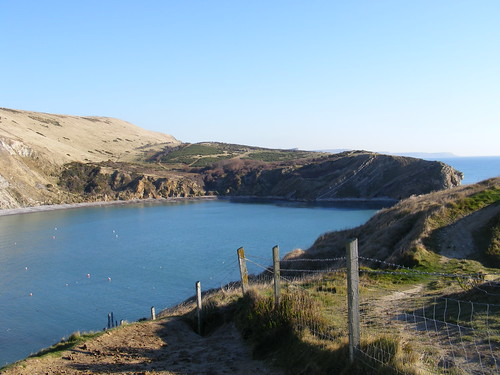 Lulworth-Cove,FossilForest,Castle31