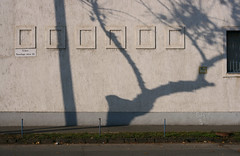 Noszlopy utca (sonofsteppe) Tags: street winter shadow urban detail building tree art horizontal wall concrete 50mm daylight stem hungary exterior outdoor budapest nobody scene explore series visual exploration thewall frontview fragment bough ilmuro streetplate wallscape sonofsteppe pusztafia kbnya utcatbla streetplatesofbudapest noszlopyutca urbanlifeoftrees