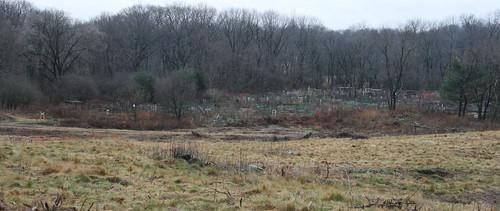 field by gardens 2
