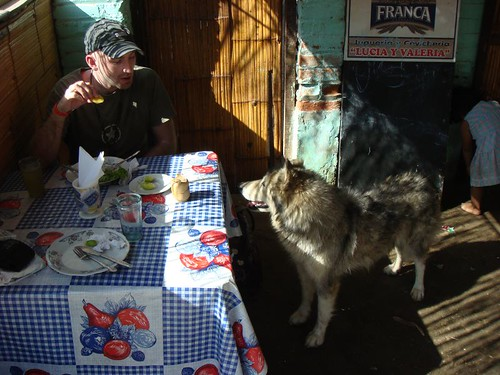 Ragz and the Siberian Husky, Máncora lunch.