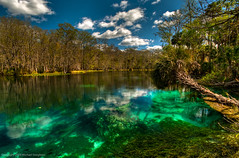 At the end of the trail in Silver Springs. (MDSimages.com) Tags: world county city travel silversprings wild sky usa green nature water clouds digital america silver landscape photography blog nikon media unitedstates natural florida south north central scenic marion east foliage springs processing northamerica marsh southeast hdr highdynamicrange d3 ocala travelphotography photomatix michaelsteighner mdsimages hyliteproductions ocali traveltravelphotography photomike07 mdsimagescom hylitecom