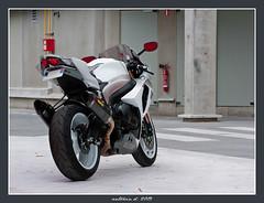 GSX-R 1000 k9 (Antonin Douard) Tags: r moto k2 motogp k8 rossi 1000 gsx k6 gp k9 k4 k5 gsxr k1 k3 pirelli vermeulen k7 gsv capirossi akrapovic