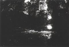 La Sioule (Jrme Sneuw) Tags: blackandwhite bw france river noiretblanc rivire nb contrejour auvergne argentique grandangle rolleiflexsl35e lasioule siouleriver combreille