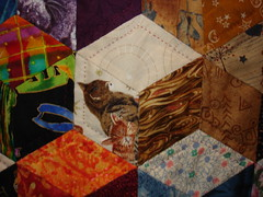 Traveling Tumbling Block (detail) by: Karin McElvin