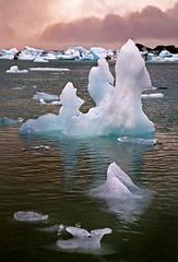 Jökulsárlón - Iceland (tigrić) Tags: autumn winter sunset panorama lake cold ice nature water landscape iceland melting lakes september glacier route1 jokulsarlon globalwarming glacierlagoon breiðamerkurjökull