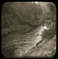 Hyw 22 (baronCORONADO) Tags: usa art nature ecology sepia oregon america landscape photography landscapes us nikon scenery unitedstates forestry contemporary unitedstatesofamerica fineart blackburn photograph northamerica environment concept wilderness conceptual artcenter environmentalism ecosystem concepts artistry naturalresources ttv argus75 artmovement artmovements artstyles