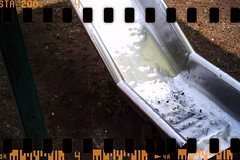 Holga (35mm)