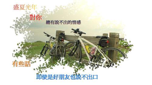 IMG_8846-2-1