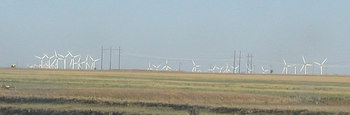 Texas Windmills