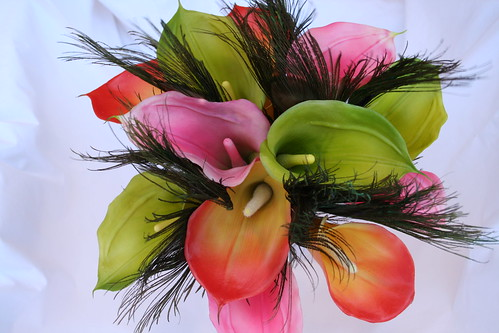 Callas and peacocks hand tied