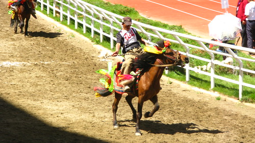 Traveling and Festival Shangrila China Horse Racing Festival