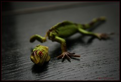 Broken Dreams (D.Reichardt) Tags: macro children dead toys die dragon room mystic picnik