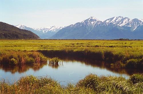 potter-marsh-alaska-1999