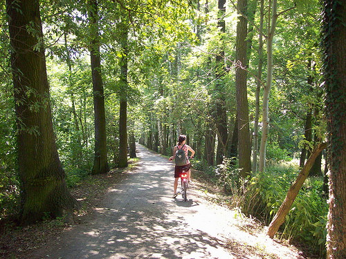 biking in Spreewald Biosphere Reserve, Germany (by: R. Sohmer)