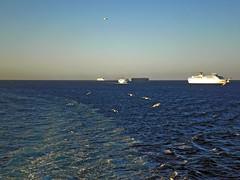 am traffic (alliak.com) Tags: sea summer vacation seagulls ferry island boat sailing ships cargo greece lesvos cruiser lesbos agean mytilene pireaus peiraias mitilini