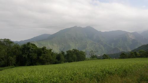 28.從「秘密遊」眺望阿里山山脈 (1)