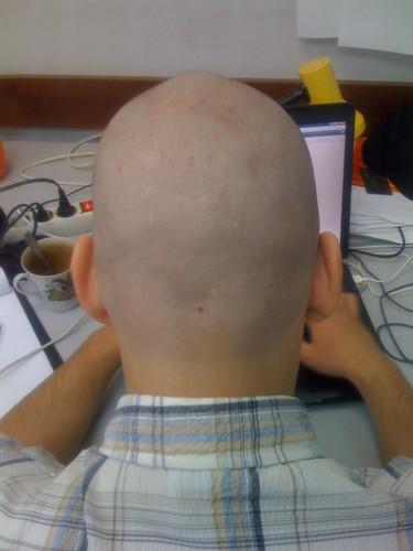 hairles