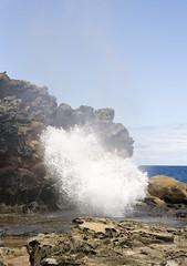 It is a gusher (LP365) Tags: ocean sea rock island hawaii lava pacific maui palmtrees blowhole tropical nakaleleblowhole westmaui