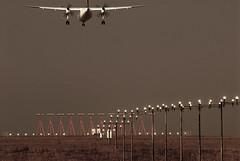 Flying on wings of silver (pho_kus) Tags: 10 sic mywinners abigfave anawesomeshot theunforgettablepictures betterthangood thebestofday gününeniyisi