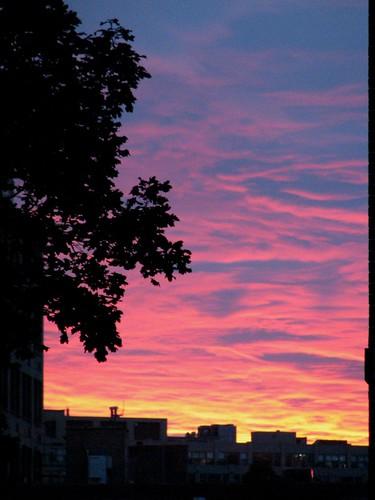 La Salle Sunset