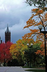 Autumn Arrives at Syracuse (Koshyk) Tags: autumn red ny color green nature leaves yellow colorful university pretty steeple syracuse newyorkstate colourful syracuseuniversity maxwellschool