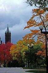 Syracuse University (by Koshyk, flickr)