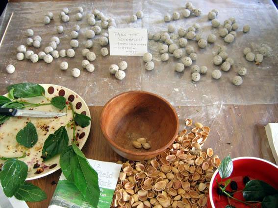 seedballs_debris