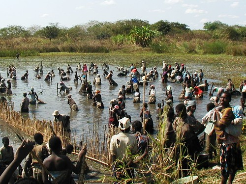 Basket fishing, Mozambique
