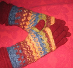 glove covers2a