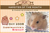 Biscuit (Hamster of the Month)