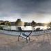 Jardin des Tuileries_7