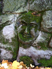 Man in the Wall (Rozanne) Tags: rock stone moss portlandoregon entombed retainingwall keepportlandweird maninthewall headinthewall keepportlandsretainingwallsweird