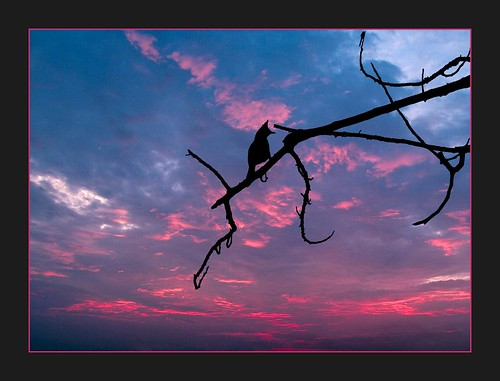 goodbye the day by linh.ngan, on Flickr