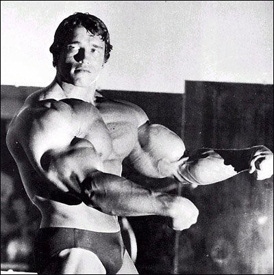 that of Sylvester Stallone