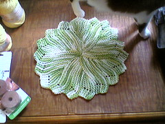 Dishcloth 2